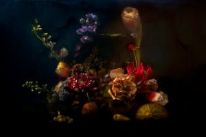 Lilli Waters - A Still Life of Disorder - Photography